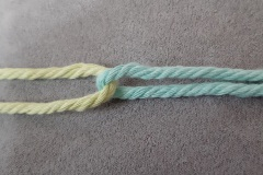 01-twist-first-2-colors